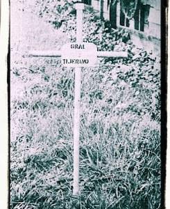 Nicas belicosos: Nicaragüenses en la Guerra Civil de Costa Rica, 1948
