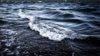Evangelio apc Mar