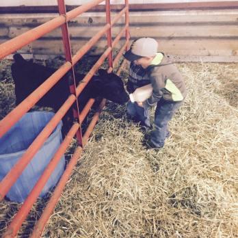 Ranching is a family affair! - Schmitt Angus