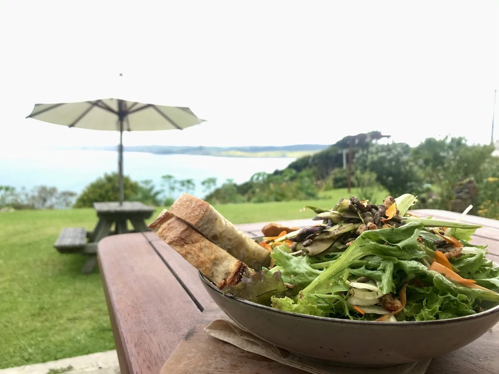 Conscious kitchen at solscape hostel. Healthy plant based options over looking the raglan surf breaks.
