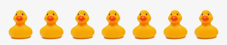 marketing strategy details - ducks in a row