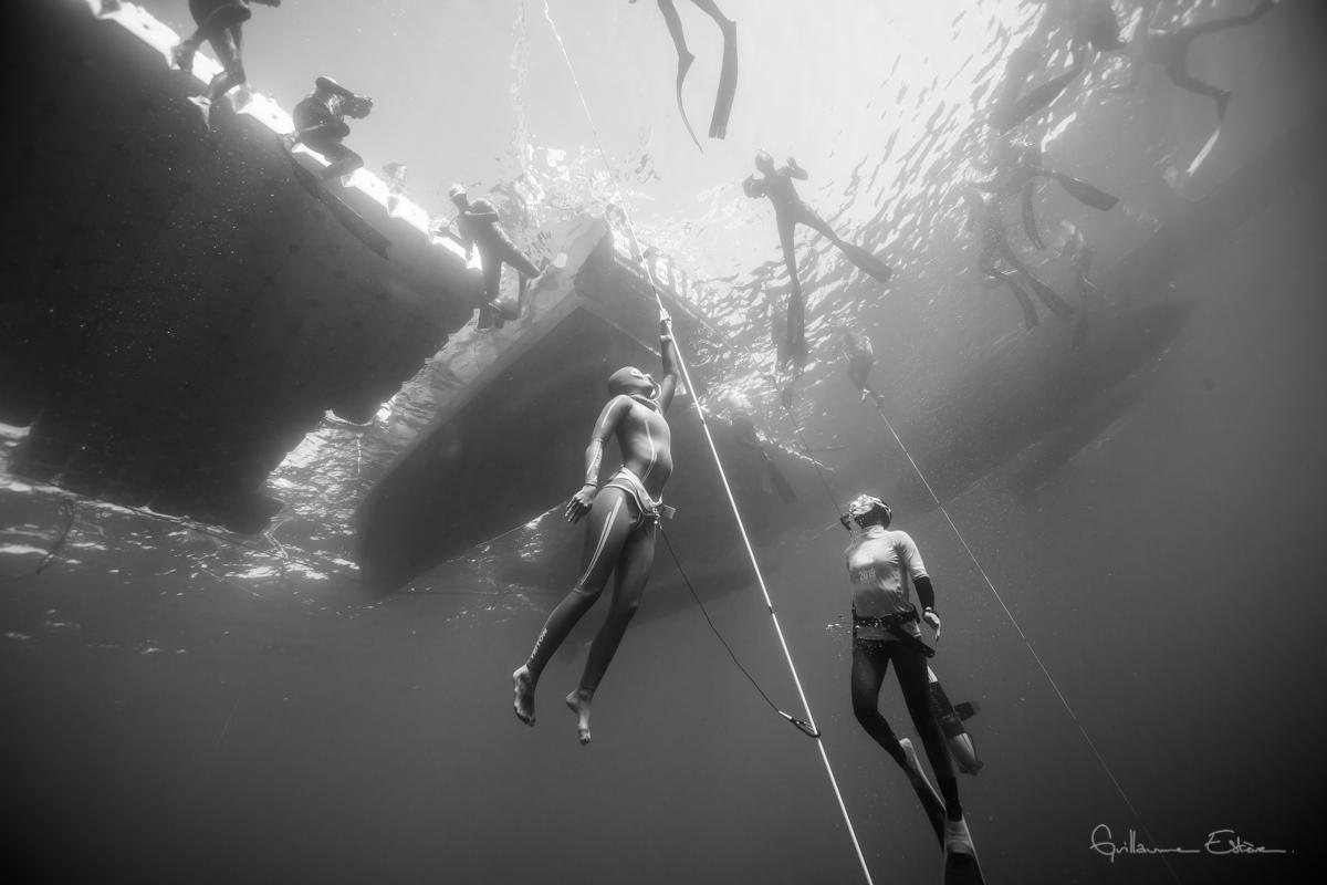 Diver under water - Nicole Edensbo