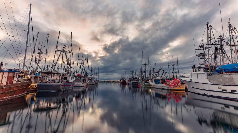 Ships in a Dutch port - student sail across the Atlantic Ocean