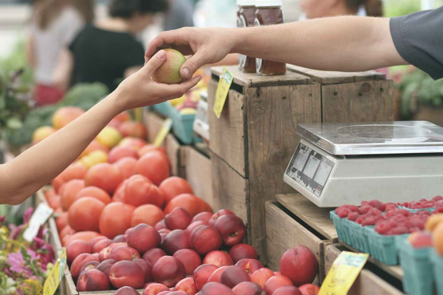 fruit at a farmer's market - environmental sustainbility
