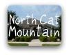 North Cat Mountain Austin TX Neighborhood Guide