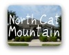 North Cat Mountain Austin TX Neighborhood Guide