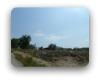 Oak Springs Dripping Springs TX Neighborhood Guide