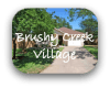 Brushy Creek Village Austin TX Neighborhood Guide