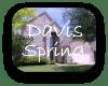 Davis Spring Austin TX Neighborhood Guide