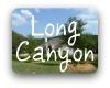 Long Canyon Austin TX Neighborhood Guide