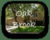 Oak Brook Austin TX Neighborhood Guide