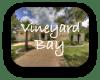 Vineyard Bay Austin TX Neighborhood Guide