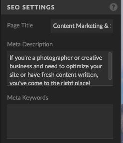 screenshot of title and description field in Showit website builder