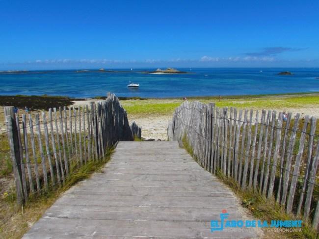 Islas Glenan