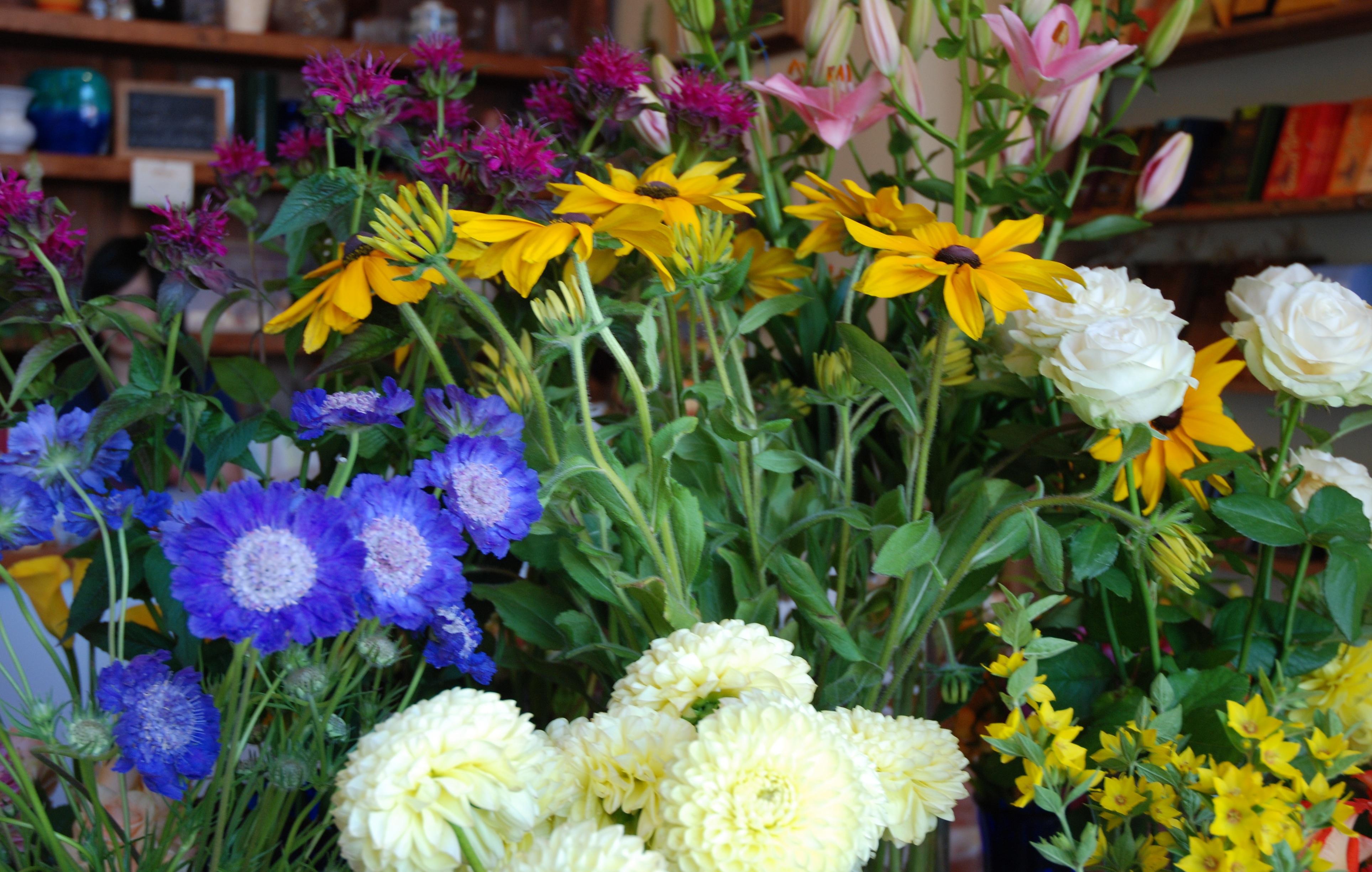 flowersatthemeadow