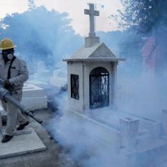 CONGELADOS 192 MILLONES DE PESOS PARA COMPRA DE INSECTICIDAS DEL MOSCO TRANSMISOR DEL DENGUE