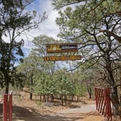 Gobierno de Jalisco y Conafor firman convenio para proteger zonas forestales