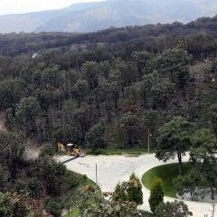 Ex candidato de Morena autorizó urbanización de Area Natural Protegida en Tlajomulco