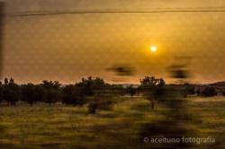 Imágenes de Ciempozuelos, mayo de 2015. Fotógrafo: Daniel Ramos.