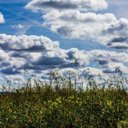 Nubes. 12 de julio de 2014. Fotógrafo: Daniel Ramos.