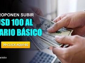 Proponen subir USD 100 al salario básico 2021