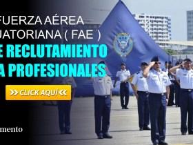 Fuerza Aérea Ecuatoriana (FAE) abre Reclutamiento para Profesionales