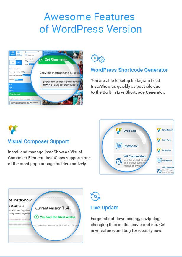 InstaShow WordPress plugin