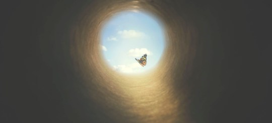colorful butterfly finds its way out of a dark tunnel, concept of freedom
