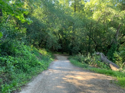 Bear Creek Redwoods Open Space Reserve – Alma Trail and Redwood Springs Trail Loop