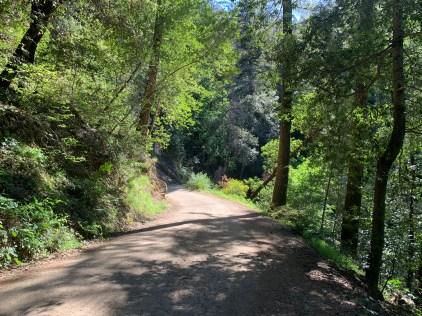 John Nicholas Trail