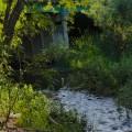 LG Trail River