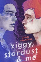 Ziggy, Stardust and Me Book review