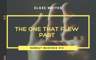 The one that flew past: Sunday Musings #111