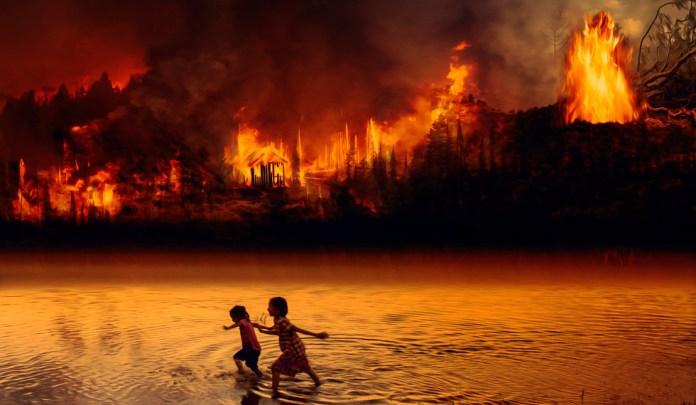 Emergencia sanitaria y medioambiental en Brasil