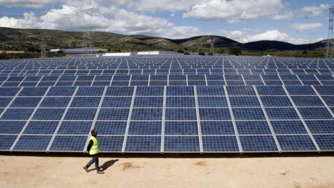 Energías renovables, en guerra con la Biodiversidad