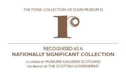 Recognised Logo 03.08.16 - Elgin 150dpi RGB