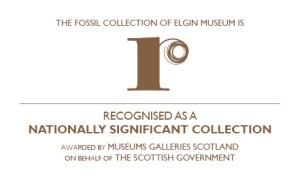 Logo for Recognised collection