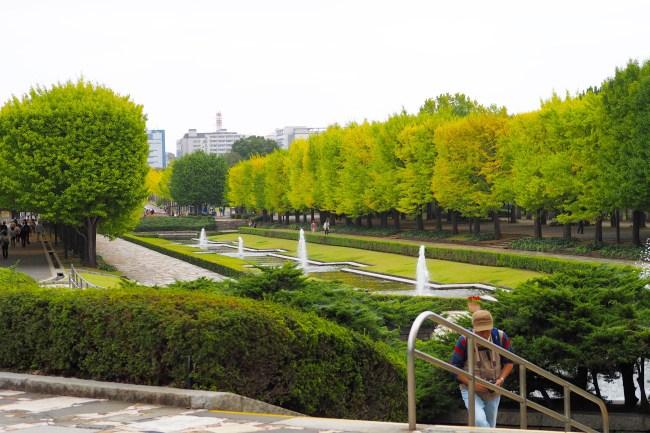 昭和記念公園201510-44