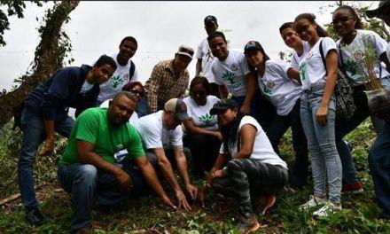 Politécnico Loyola y Ministerio de Medio Ambiente se unen en jornada de reforestación