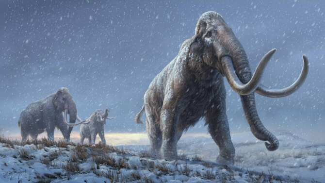 Lo que revela de los mamuts el ADN más antiguo que se ha logrado secuenciar