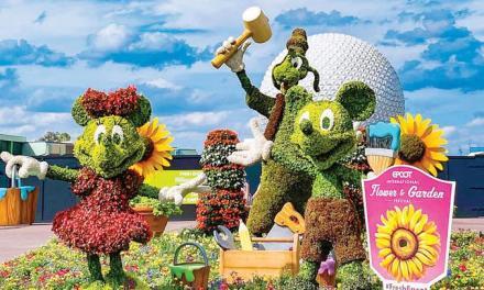 ¡Bienvenida primavera!: Festivales florales para recibirla en la Florida