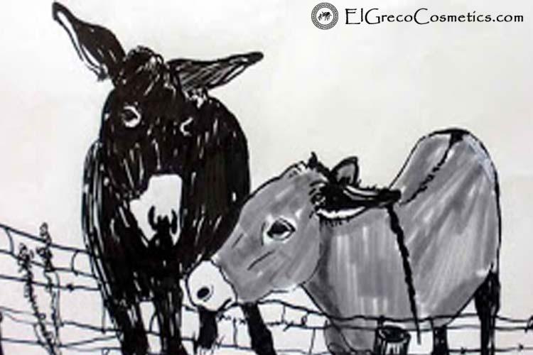 organic-donkey-milk-soap