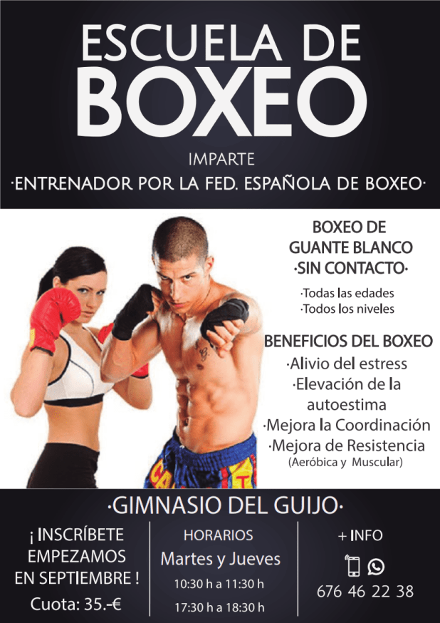 Poster Boxeo