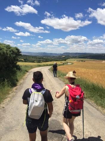 JTTA_2016_Camino2
