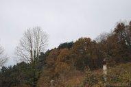 2010-12-07-13_46_02-DSC_0104