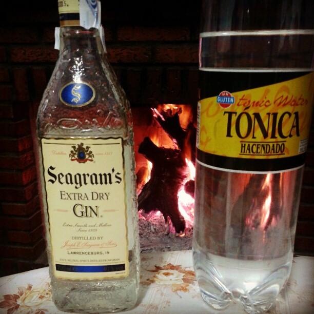 [28] digestivo de gin & tónica