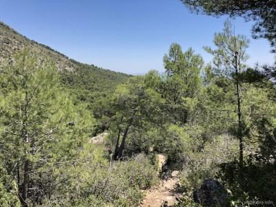 senda del barranco del Gallego