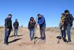 El Plan Forestal ya plantó 2.000 árboles en suelo puntano