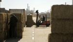 Qatar recibió la primera carga de alfalfa enviada por el gobierno provincial