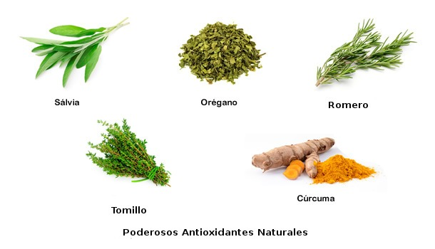 TOP 5 Especias con mayor poder Antioxidante